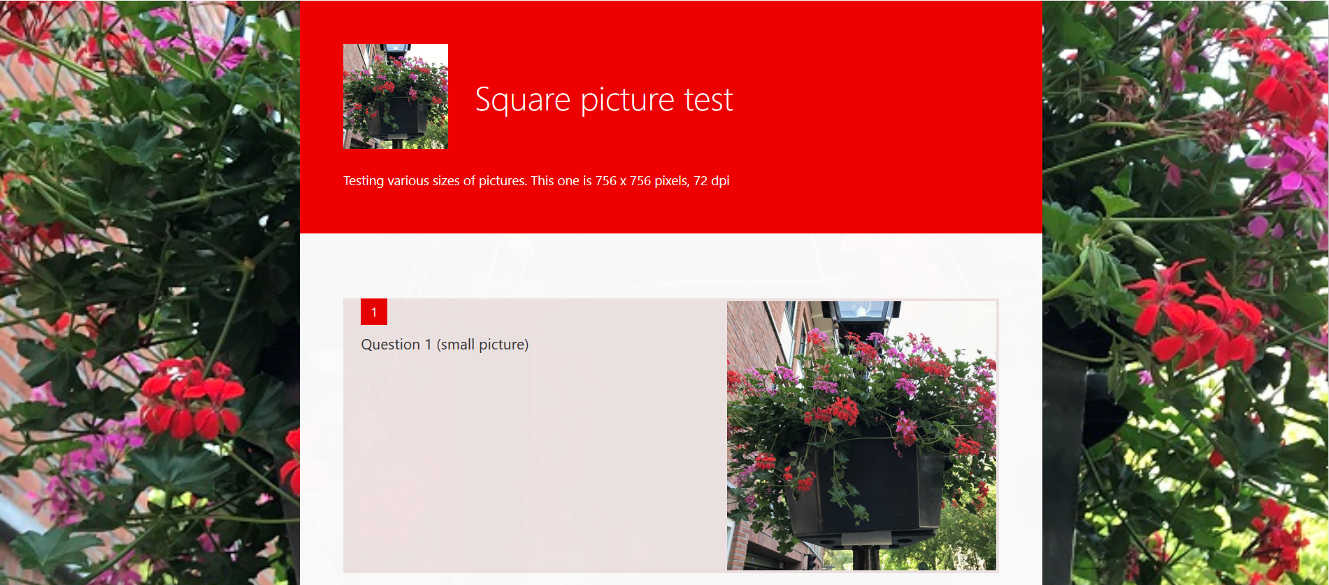 Formfoto-squarebackground.png