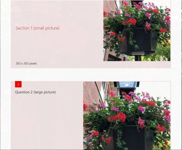 formfoto-squaresmallvslarge.png